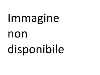 F 031 e-distribuzione Flight per bruciatore MT taratura impianti  III